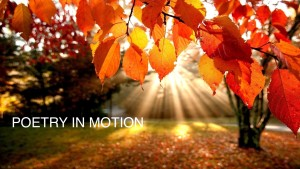 autumn-leaves-wallpaper-1