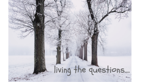 living the questions....