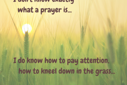 how to fall down into the grass…6-20-19