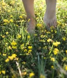 barefoot across the savannah…6-1-16